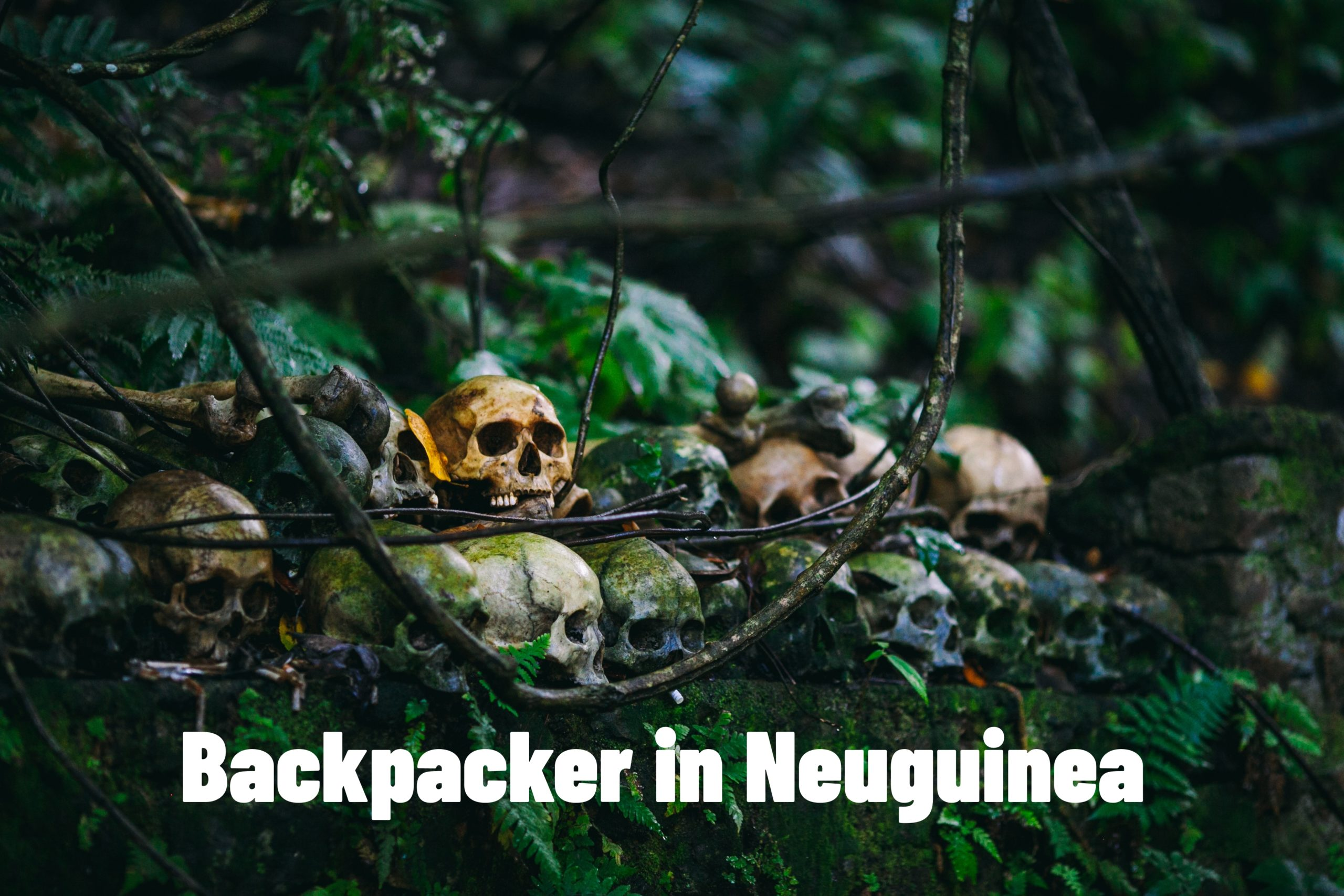 Backpacker in Neuguinea – Escaperoom Dillingen a.d.Donau