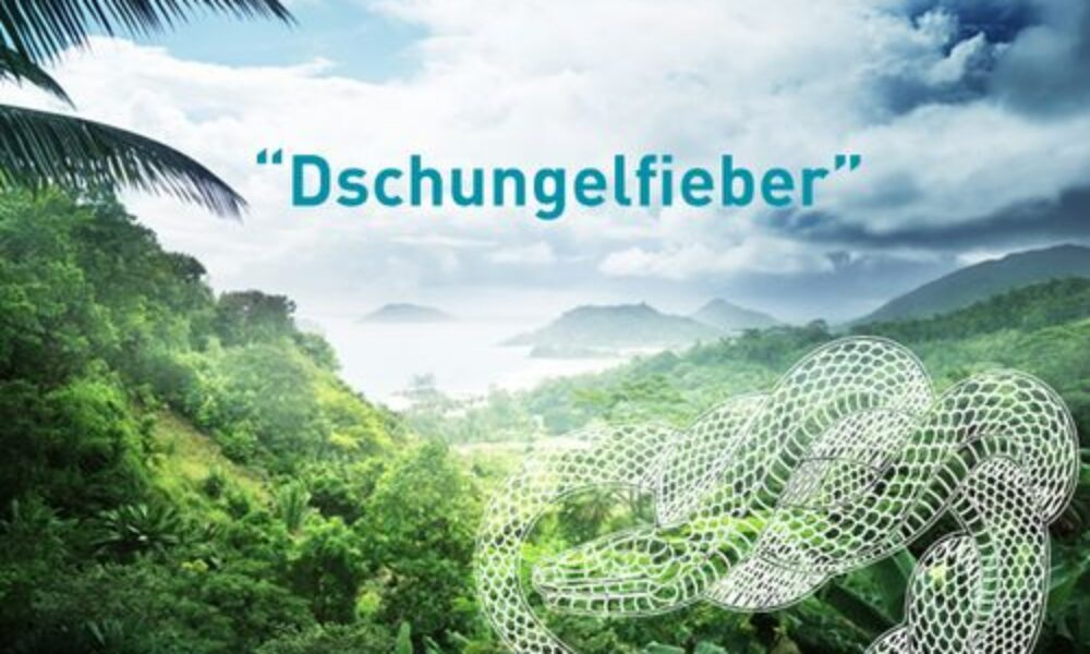Dschungelfieber - Frexit Live Escape Room Freiburg